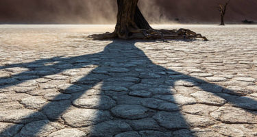 The 'Cracks And Shadows' Of Cancer Support